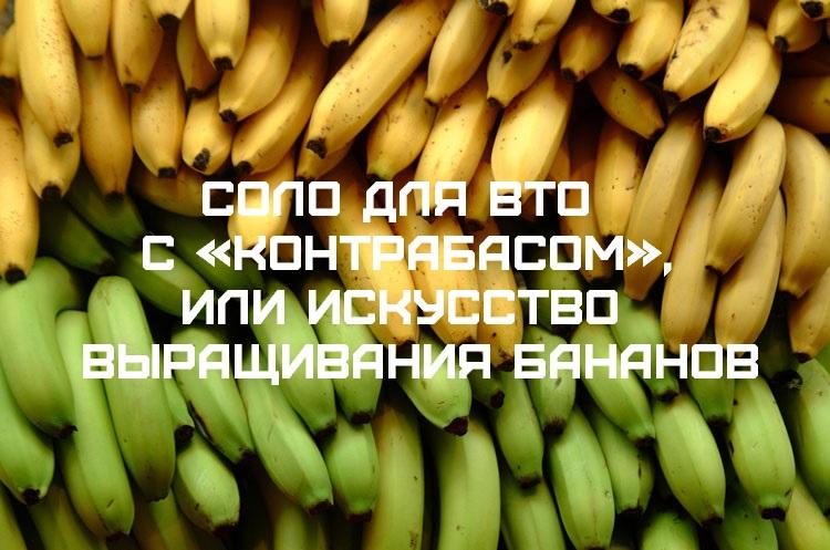Соло для ВТО с «контрабасом», или Искусство выращивания бананов